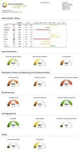 Zell-Check Vitalstoff-Check Auswertung