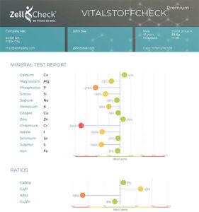 Zell-Check Vitalstoffcheck Auszug